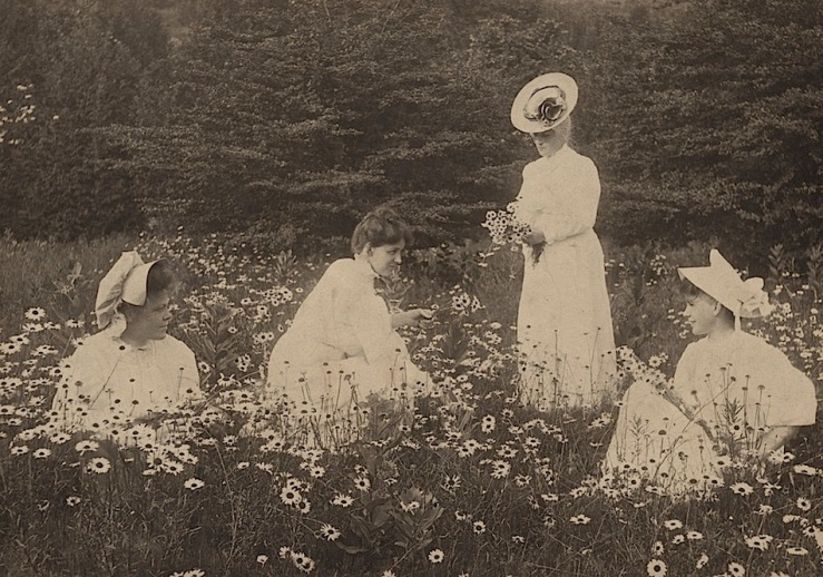 Four women in daisies, Huron County Museum
