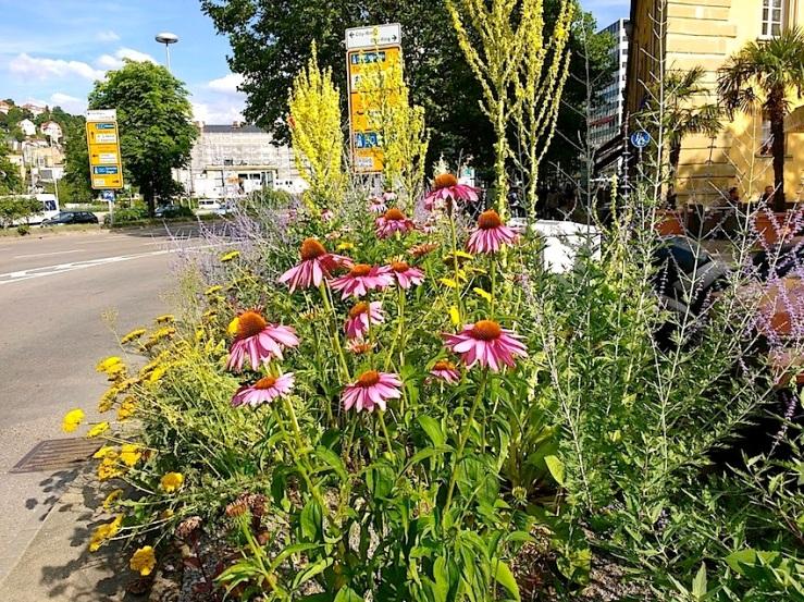 7 Karlsplatz, Stuttgart, July 2016, enclos*ure