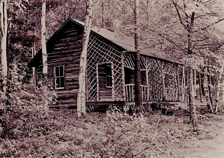 Bon Echo cabin, Cloyne & District Historical Society