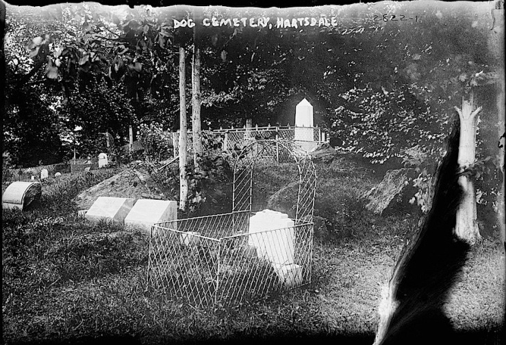 1 Hartsdale Pet Cemetary, Bain New Service, Library of Congress