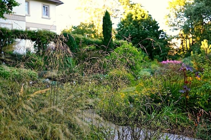 1a Hohenheim garden, Aug 23, 2016, enclos*ure
