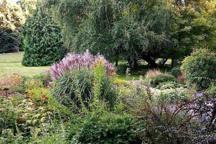 23a Hohenheim garden, Aug 23, 2016, enclos*ure