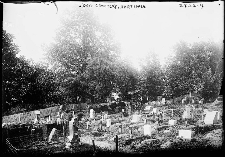 4 Hartsdale Pet Cemetary, Bain New Service, Library of Congress