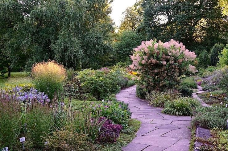 9a Hohenheim garden, Aug 23, 2016, enclos*ure
