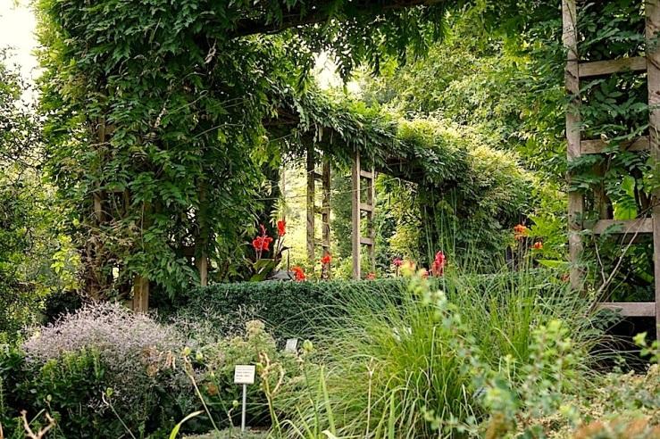 Hohenheim garden 2, Aug. 2015, enclos*ure