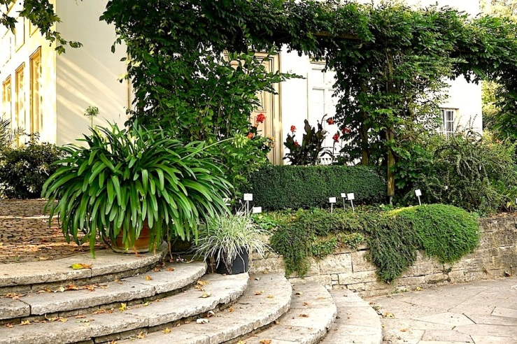 Hohenheim garden 4, 2015, enclos*ure