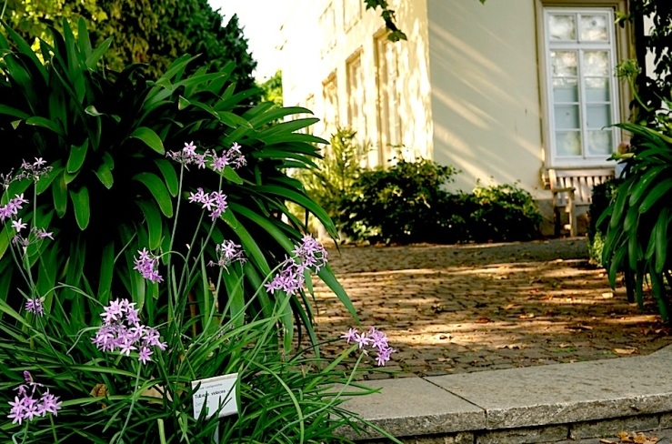 Hohenheim garden 6, 2015, enclos*ure