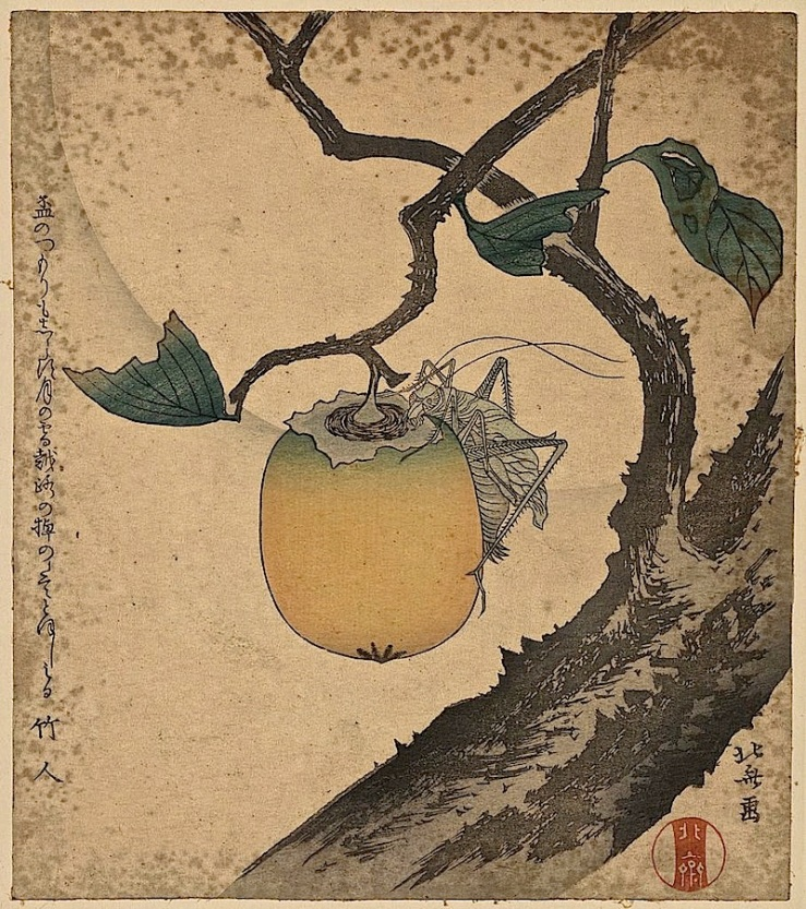 Kaki ni kirigirisu, Library of Congress