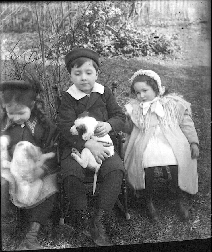 girl-boy-with-puppies-oxford-ohio-f-snyder-miami-university-libraries