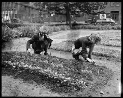 Children's Victory Garden, NYC, 1944, Library of Congress