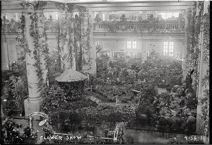 flower-show-bain-collect-library-of-congress