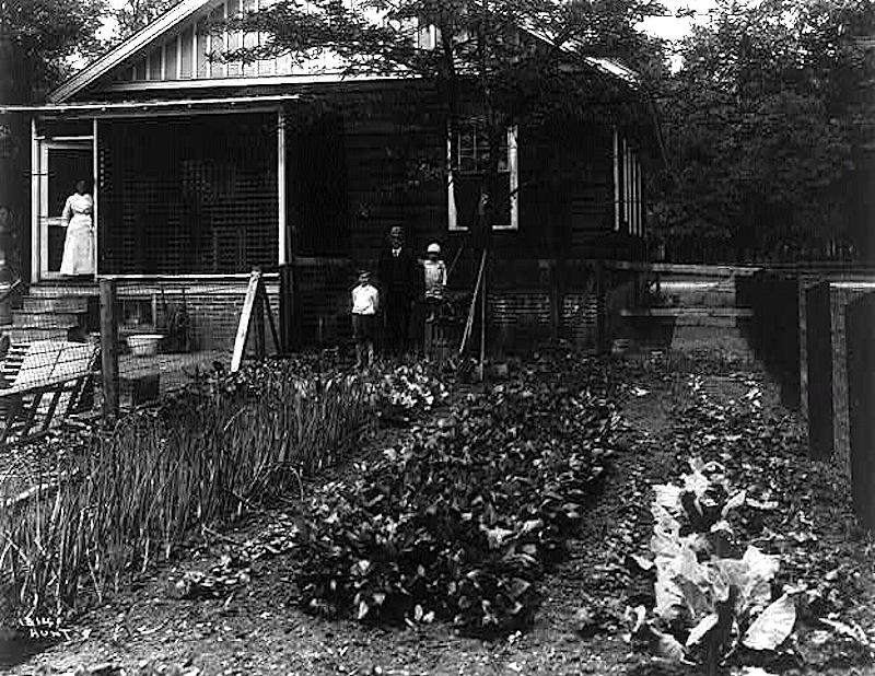Garden Of $20 A Month Home,u201d Fairfield, Alabama, 1917, Via Frank And  Frances Carpenter Collection, Library Of Congress Prints And Photographs  Division.
